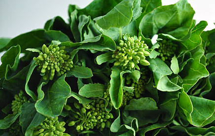 Chinese-Broccoli_11