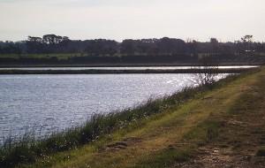 Main Irrigation Dams a